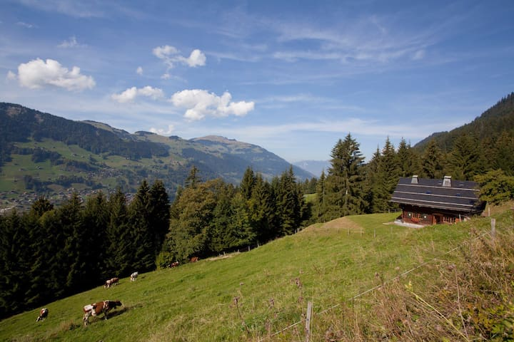 Luxury gem chalet in Val d'Illiez - Val-d'Illiez - Casa