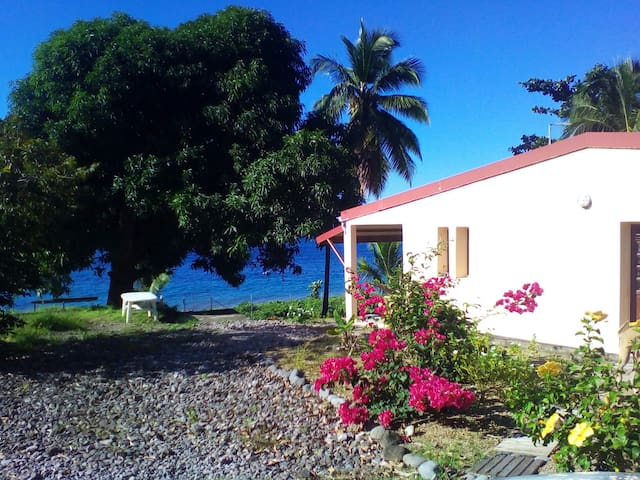 Petit Paradis au bord de l'eau - Saint-Pierre - บ้าน