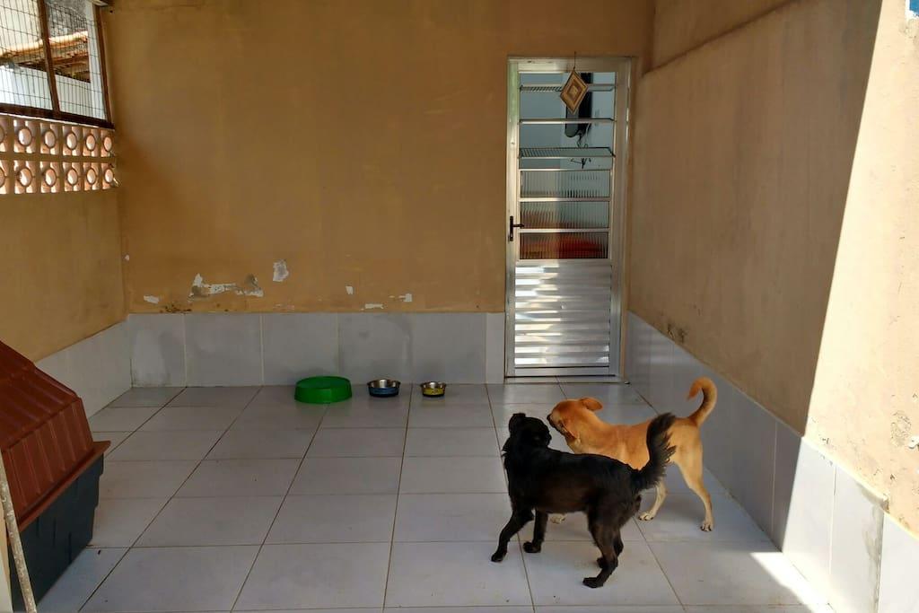 entrada da kitnet, compartilhada com os dogs.