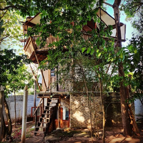 Casinha na árvore - Pousada Bodega da Terra