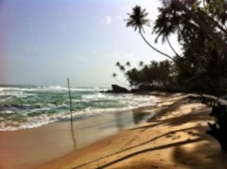 La magnifique plage de Dalawella, à 3 km de l'appartement.