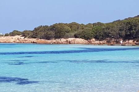 Sardinian wonderful sea