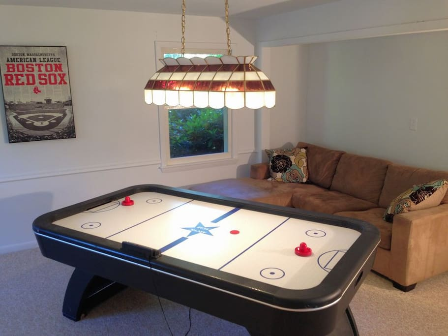 Game room with pull out sofa