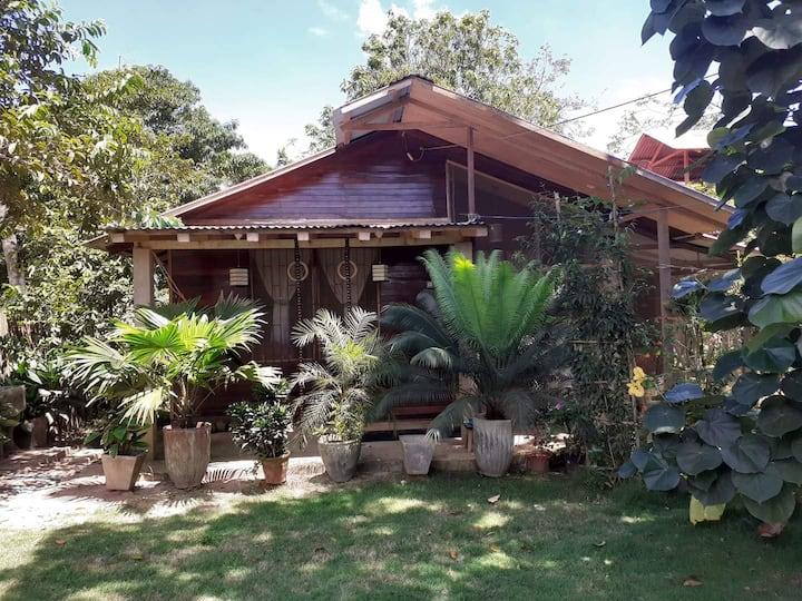 Amazonian Paradise Bungalow