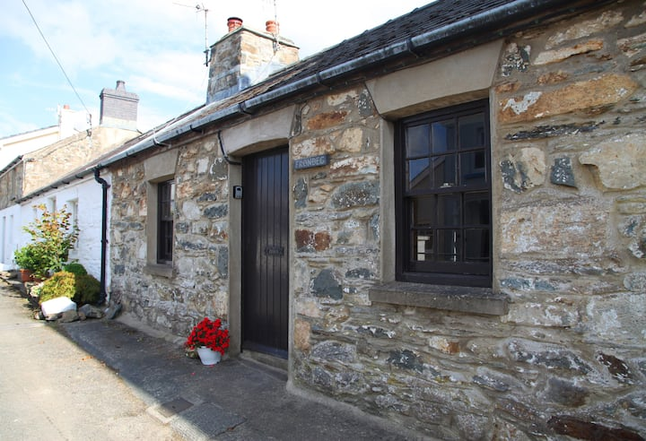 Characterful cottage in heart of Newport, Pembs