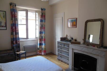 Appartement de caractère en plein centre de Lyon - Lyon