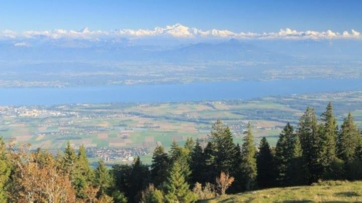 Truly Amazing Geneva lake and Alps Mountain view