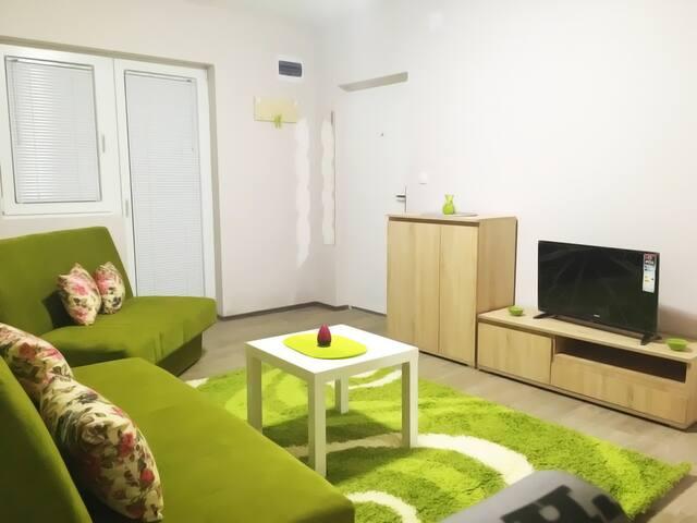 Green Apartment near airport - Irina apartments
