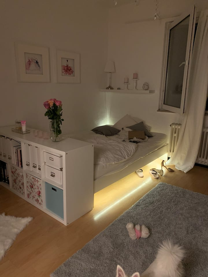 Cozy appartement in the heart of Frankfurt!