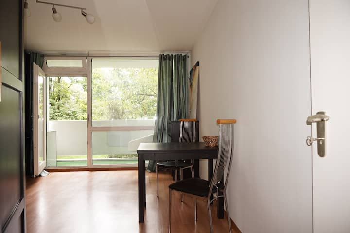 Apartment on South Park Munich