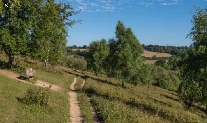 Beautiful Countryside 40 mins to Central  London