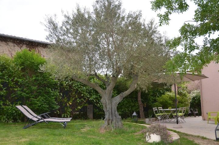 CARCASSONNE, belle villa avec grand jardin & park.