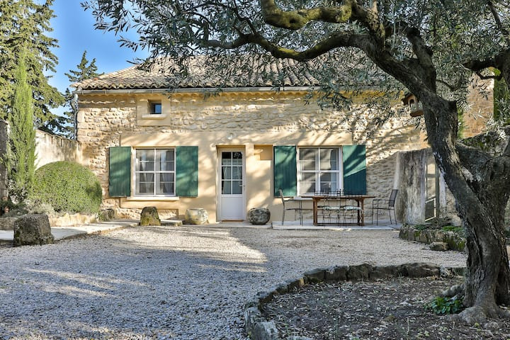 The Vineyard house in heart of Provence- Luberon