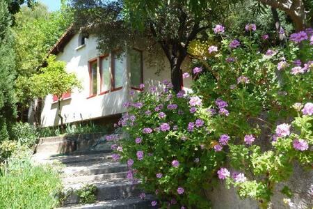 Petite maison dans un jardin