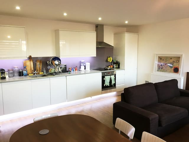 Bright, spacious flat in the heart of East London