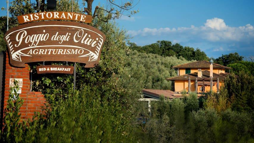 Poggio degli Olivi - Monsummano Terme - Bed & Breakfast