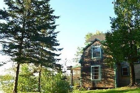 Driftwood Cabin - Brooksville - Cabin