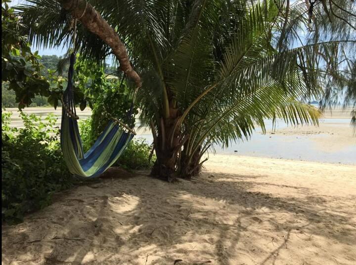 Amazing wild front beach bungalow