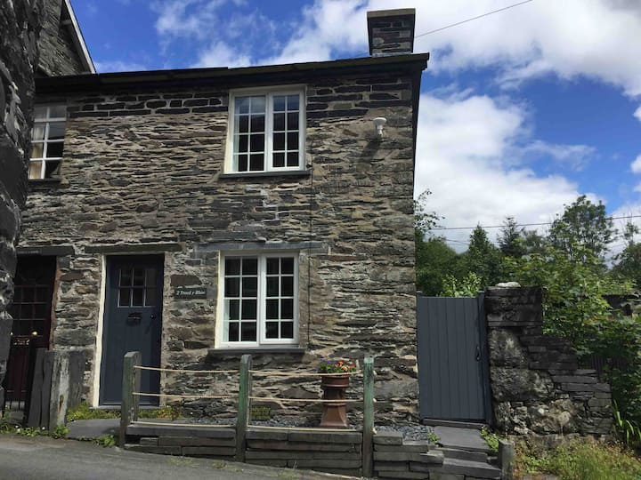 Cosy in Corris near amenities (1 good dog welcome)