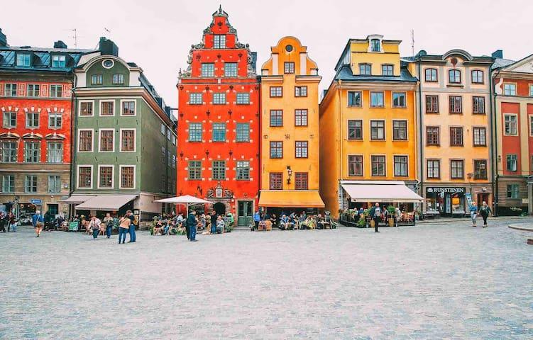 Luxurious Apt in heart of Gamla Stan/Stockholm C