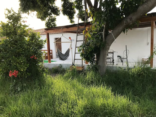 Quintessence  countryhouse near the beach