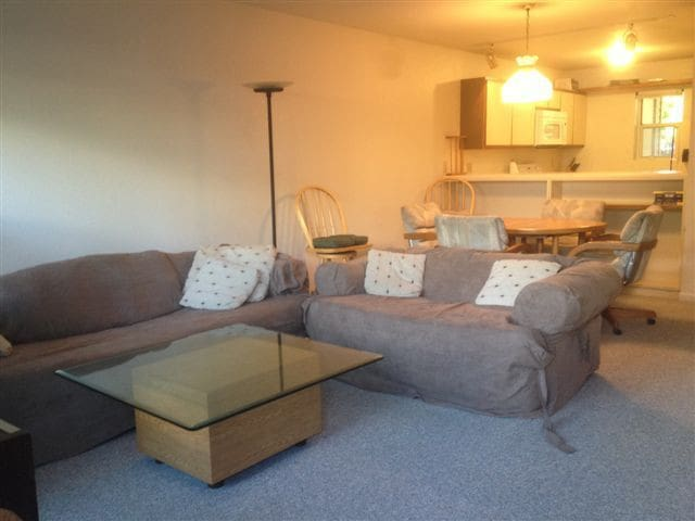 2 Bedroom Furnished Townhome Near Aspen Colorado