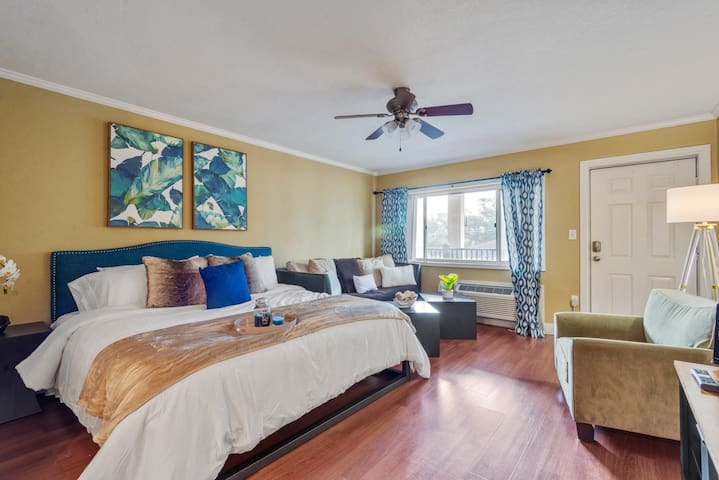 Luxury Studio Walking Distance to Doak/Free Park