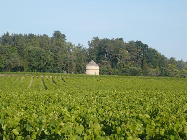 GITE INSOLITE AUX MILLIEU DES VIGNES - Bagnols-sur-Cèze - House