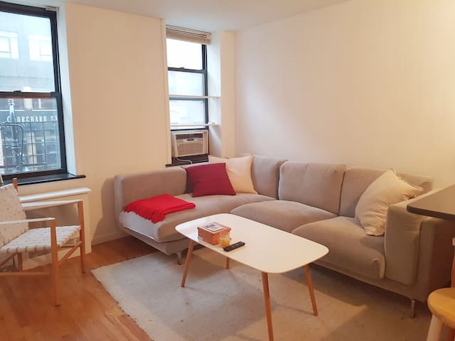 Spacious, newly renovated LES 1-bedroom apt! - New York - Byt