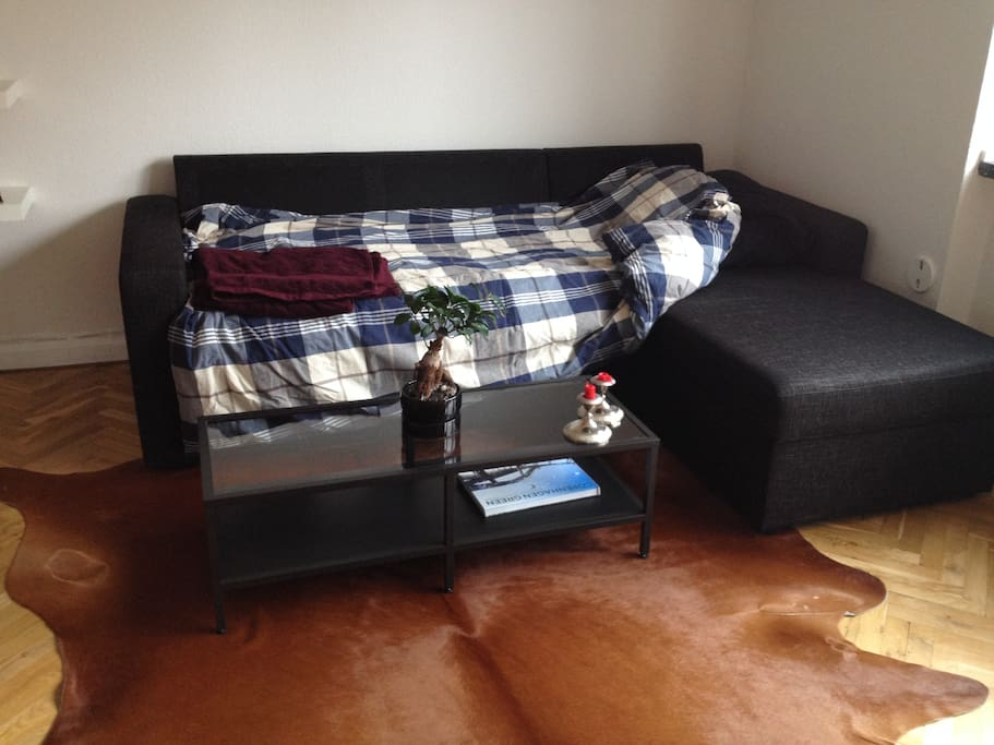 Bed sofa with duvet and pillow
