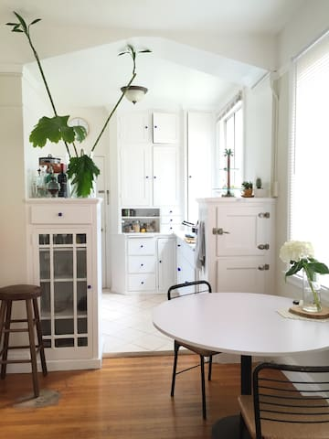 Charming large 1 bedroom apartment