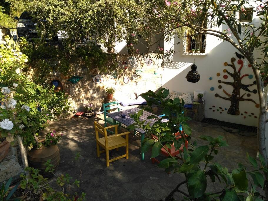 Arka Bahçe  Backyard