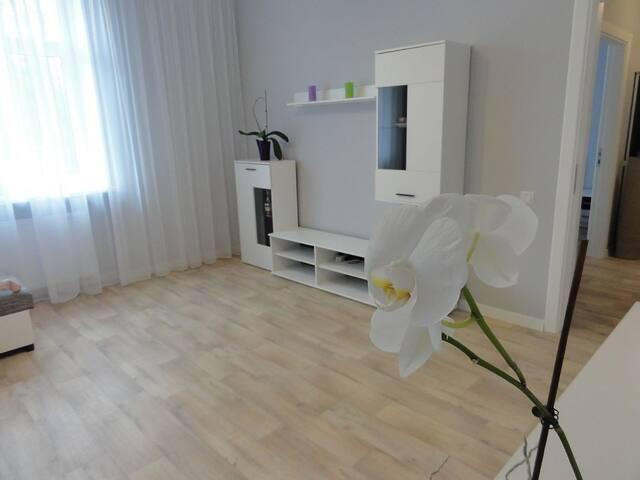 Valguma - Rīga - Apartment