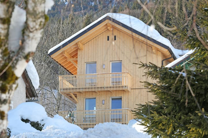 "Ski-In/Ski-Out Appartement ""Enzian"" Tauplitz"
