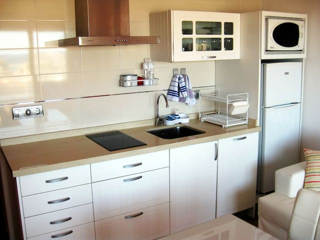 Kitchen with induction stove, sink, dishwasher, fridge and microwave