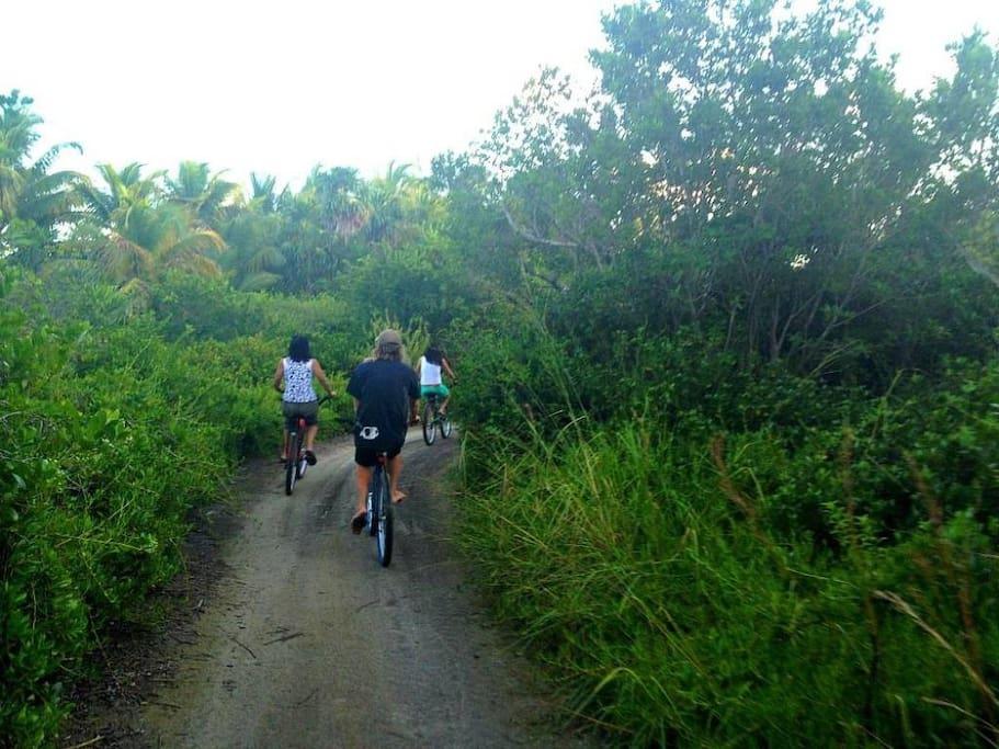 Bike the private island