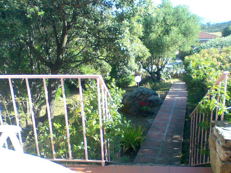 Vialetto e giardino roccioso