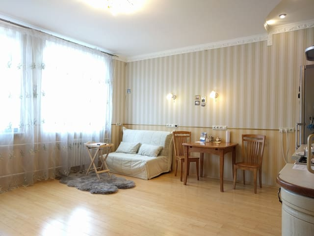 Cozy Home near airport Sheremetyevo