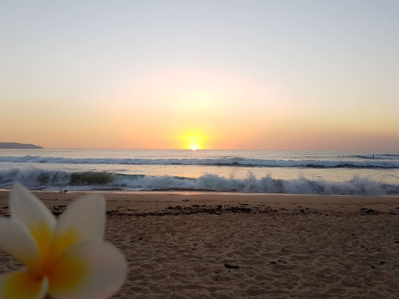 Sunrises at Dee Why Beach are magic!
