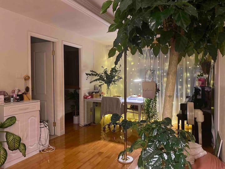 Petite Indoor Jungle