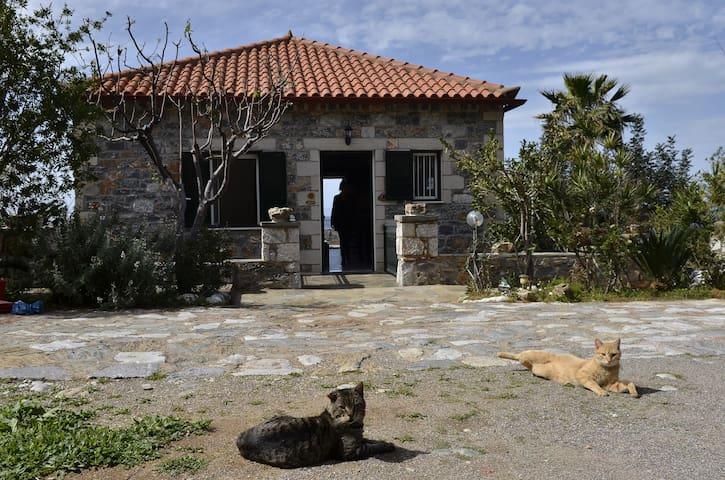 A Unique Stone House on the Sea - Agios Dimitrios - Hus