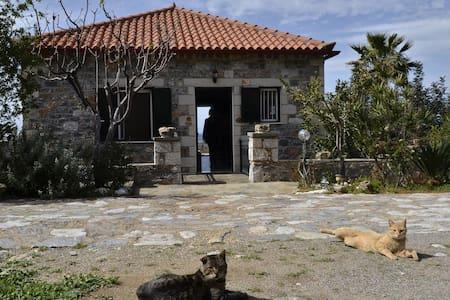 A Unique Stone House on the Sea - Agios Dimitrios - 独立屋