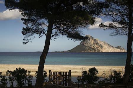 villa Laguna - Porto Taverna - 独立屋