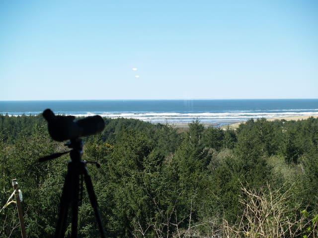 Sea La View - Oceanfront - restful hideaway