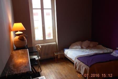 Chambre spacieuse dans appartement haussmannien - Flat