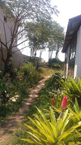 Caminho para a Pérgola e jardim traseiro.