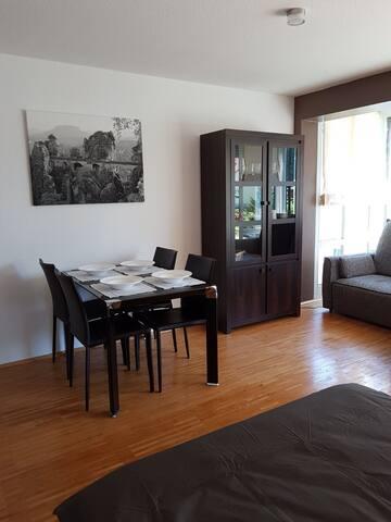 Gohrisch , Sächsische Schweiz Appartement 1. OG