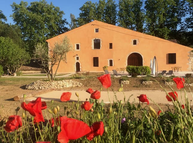 B&B with pool in center Luberon Park,double room4 - Reillanne - Bed & Breakfast
