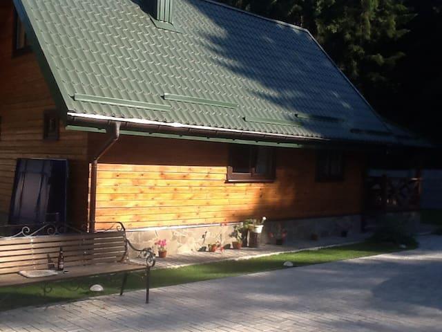 Деревянные домики в лесу - Novaye Pole - House