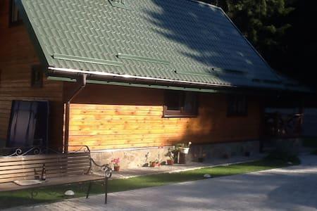 Деревянные домики в лесу - Novaye Pole